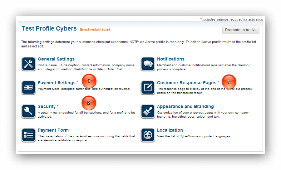 Cyber Source Test Profile Cybers