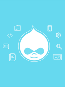 Teaser of Drupal Entity blog