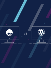 Teaser of Comparing Drupal and WordPress blog